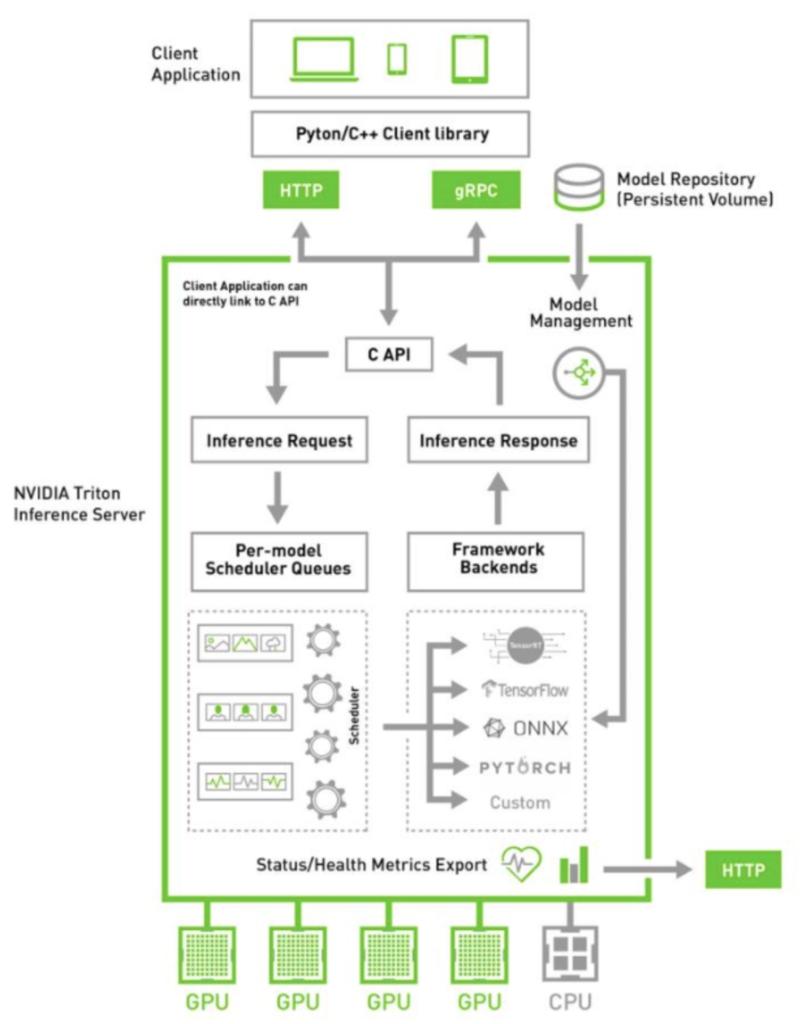 NVIDIA Triton Server layout